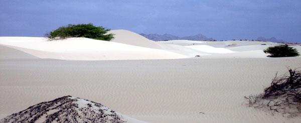 Cape Verde Deserto Viana Boa Vista