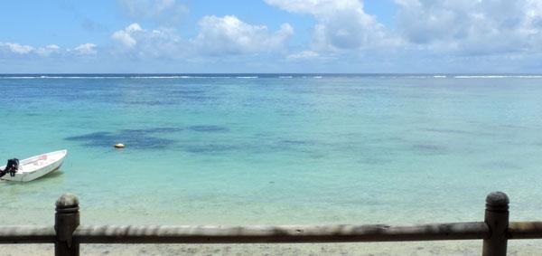 Mauritius Palmar