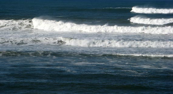 Kitesurfing - Palm Beach - Creamers