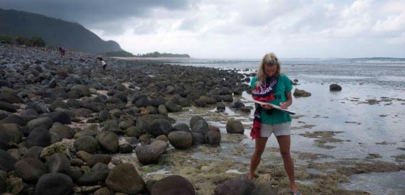 Davina Stephens - Sumbawa Sketching Rocks